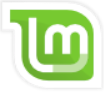 Disk partitioning guide for Linux Mint Debian