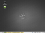 Linux Mint 10 desktop