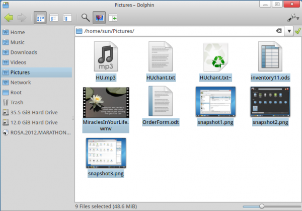 ROSA Desktop Dolphin KLook