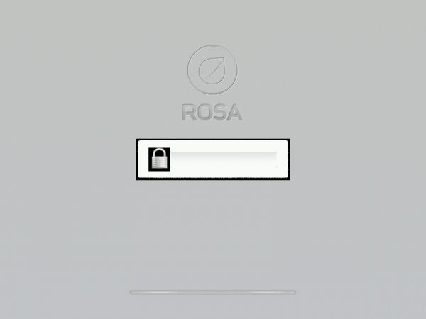 ROSA Marathon 2012 Disk Encryption