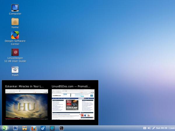 Deepin Desktop Thumbnails