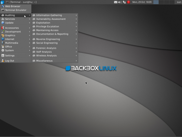BackBox Session Desktop