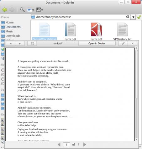 ROSA Desktop KLook