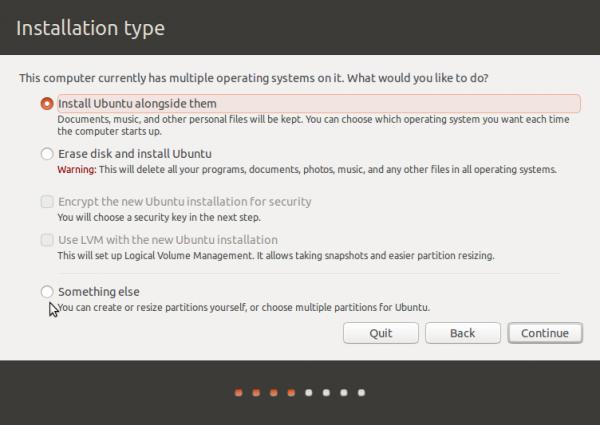 Ubuntu 13.10 disk partition methods