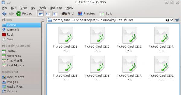 KDE Dolphin Linux