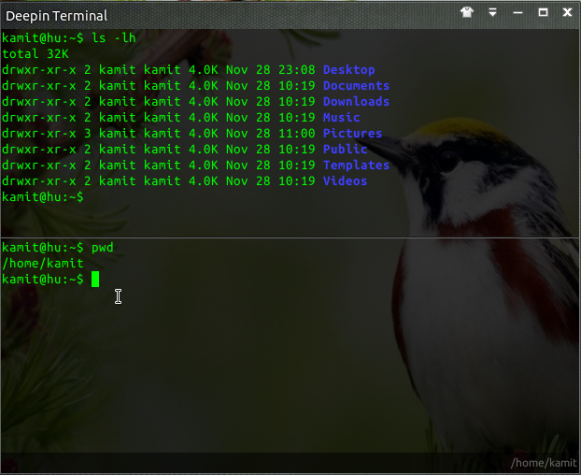 Deepin Terminal features split screens, search and ssh connections