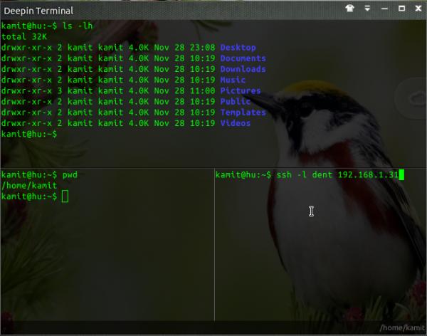 Linux Deepin Terminal split horizontal