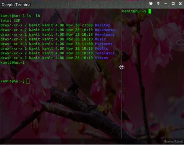 Linux Deepin Terminal drag