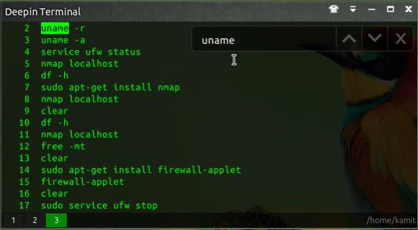 Linux Deepin Terminal search