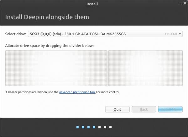 Linux Deepin 2013 diks partitions