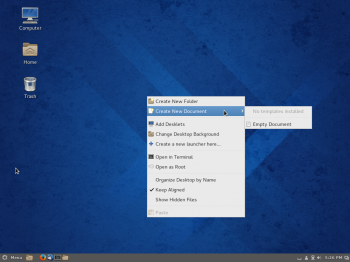 Entries in the context menu of the Cinnamon desktop.