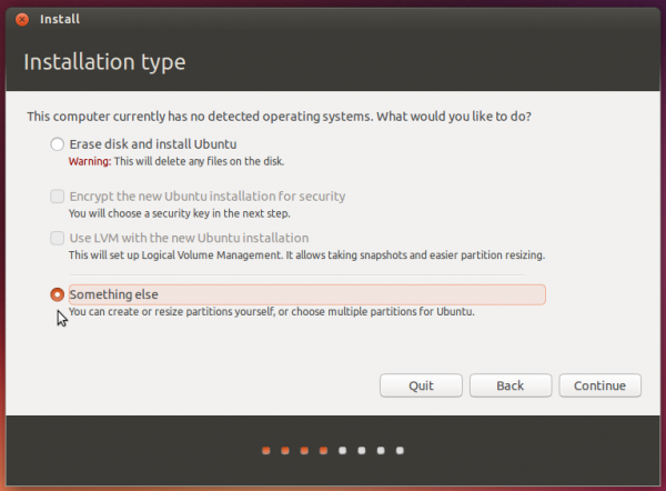Ubuntu something else option