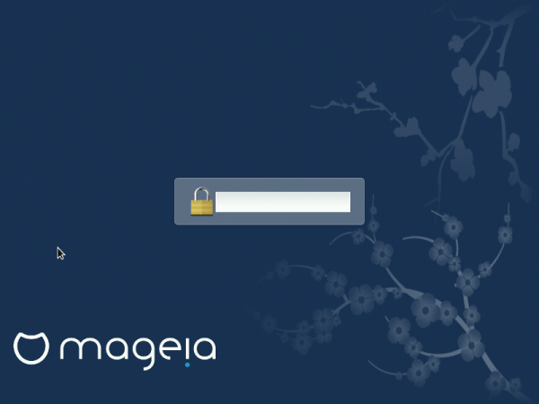 Mageia 4 full disk encryption