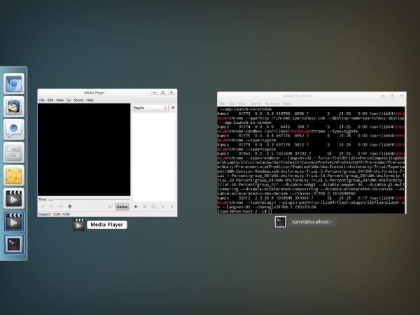 Linspus Lite 2.1 desktop scale view