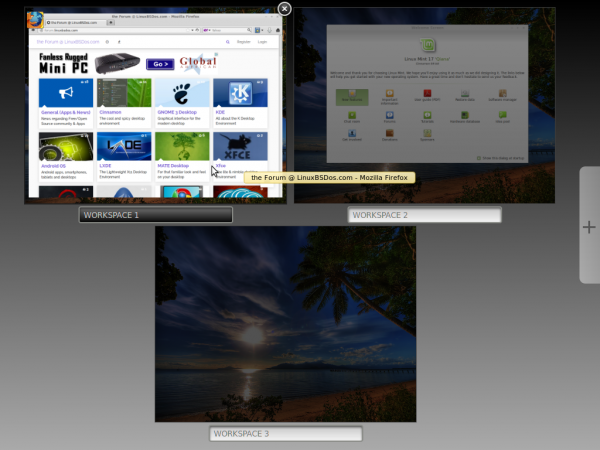 Linux Mint 17 Cinnamon desktop Expo