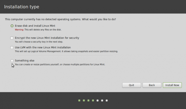 Linux Mint 17 install partitions