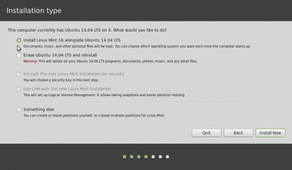 Linux Mint 17 disk partition methods
