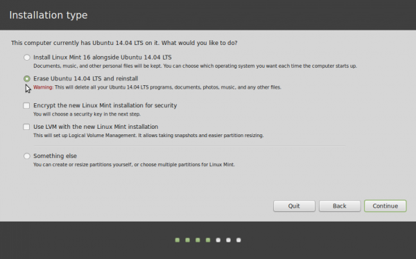 Linux Mint 17 aautomatic disk partition