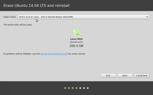 Linux Mint 17 automatic partitions
