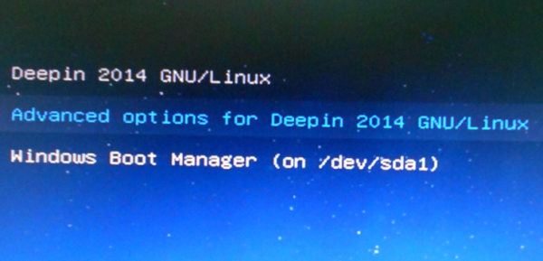 Deepin 2014 GRUB menu