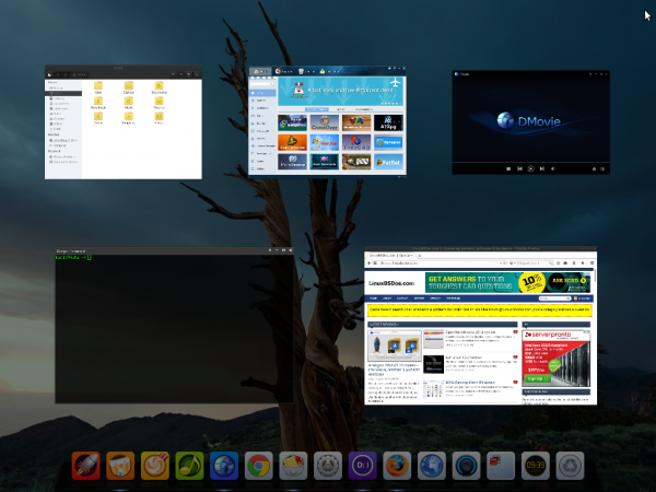 Scale view of the Deepin 2014 desktop