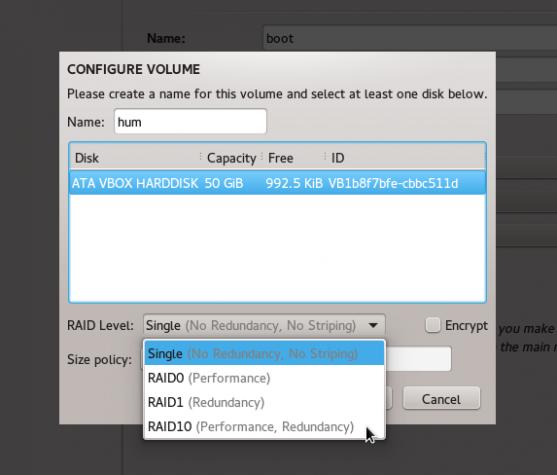 Fedora 21 Anaconda Btrfs RAID