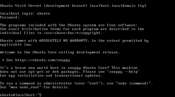 Ubuntu Core console