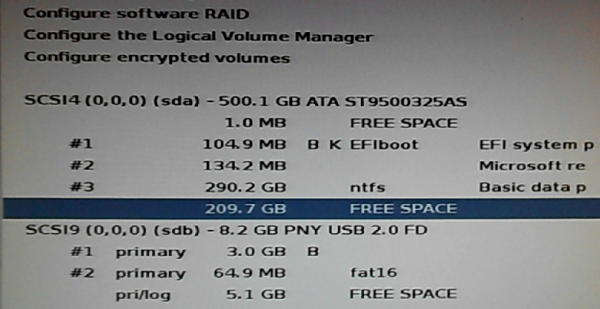 Kali Linux installer free space