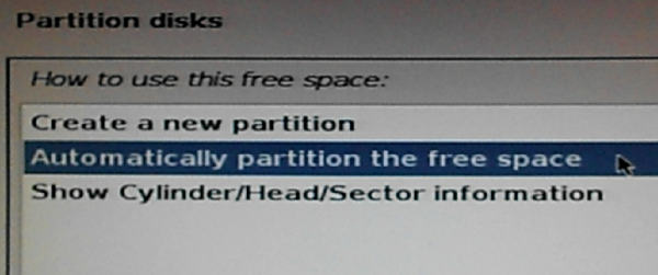 Kali Linux partition options