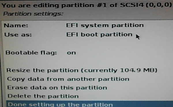 Kali Linux EFI boot partition