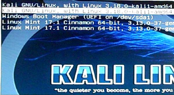 Kali Linux grub-update