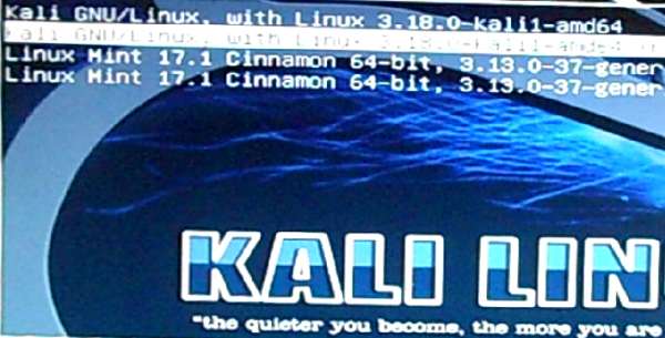 GRUB menu Kali Linux