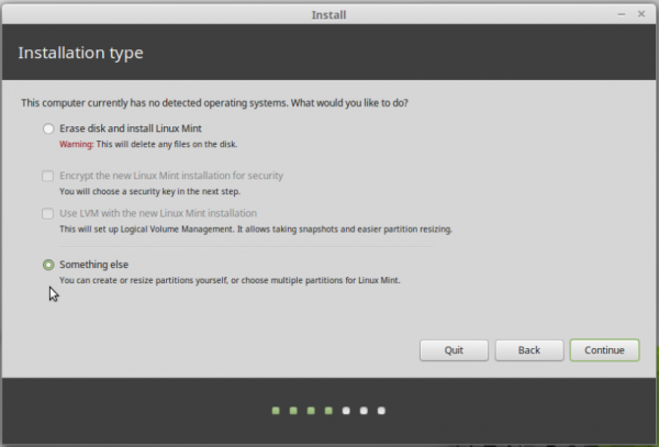 Something else Linux Mint 17.1