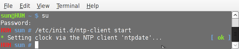 Starting ntp-client